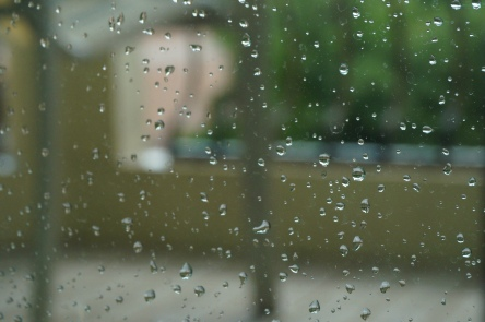 Rain, rain, everyday.